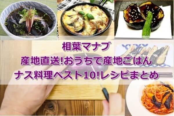 相葉マナブ】産地直送!おうちで産地ごはん ナス料理ベスト10!レシピ ...